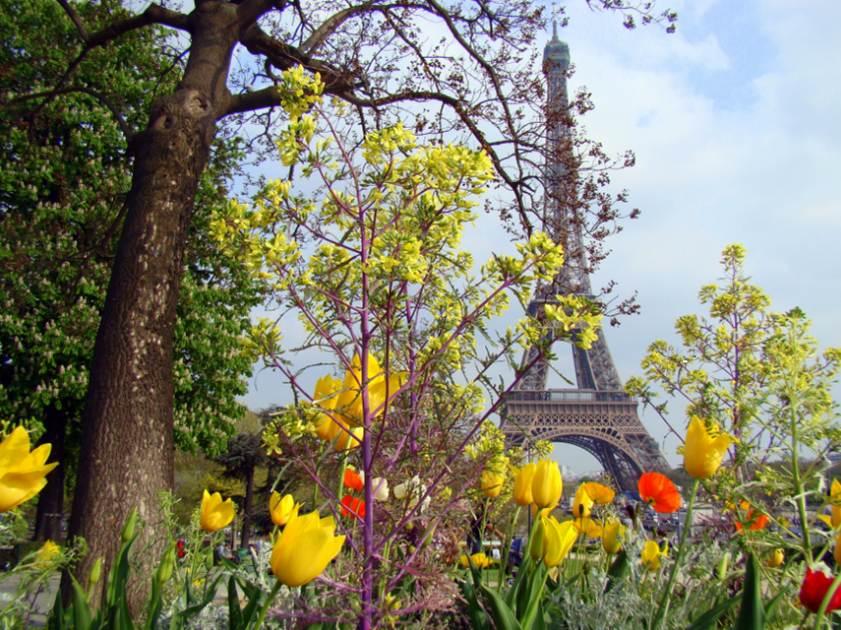 PARIS (NOVA CAPA)